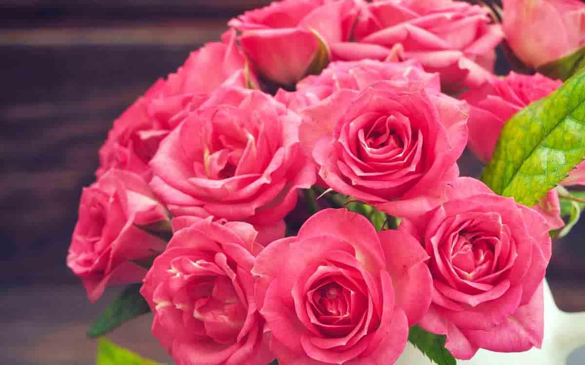 Букет красных роз с одной белой — photo 11