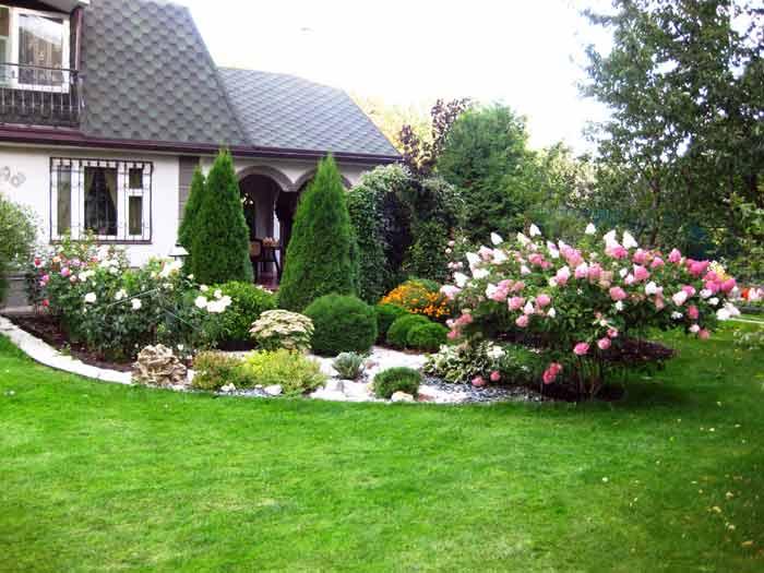 Газон на даче: как сделать зеленую лужайку своими руками 7