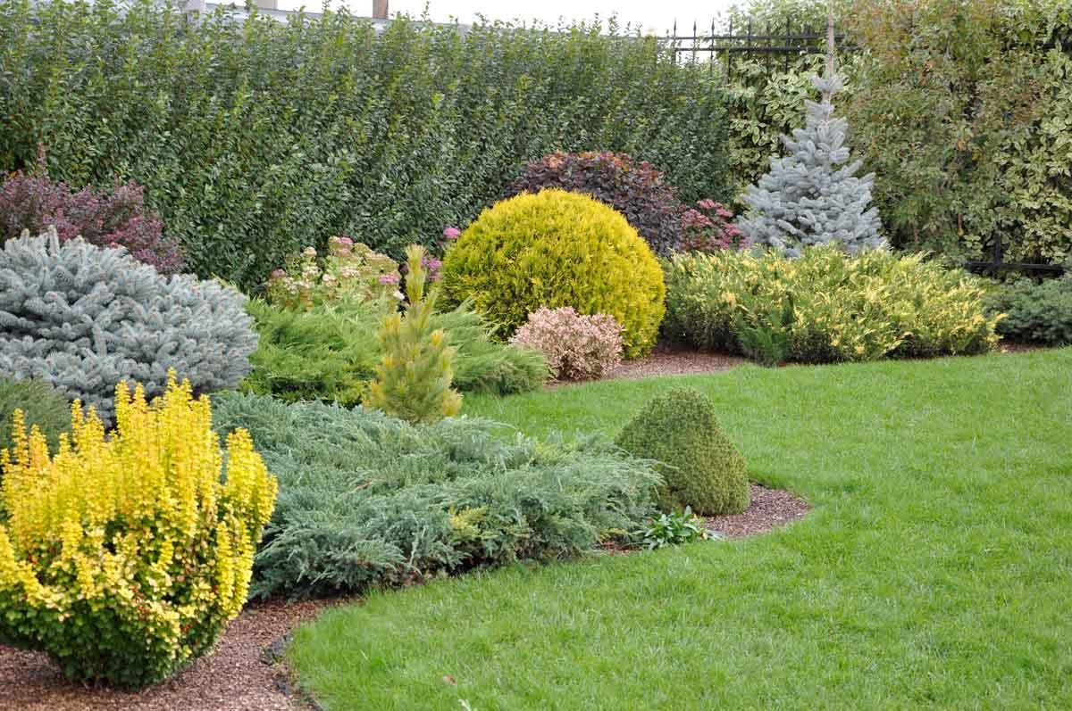 Ландшафтный дизайн, обустройство сада