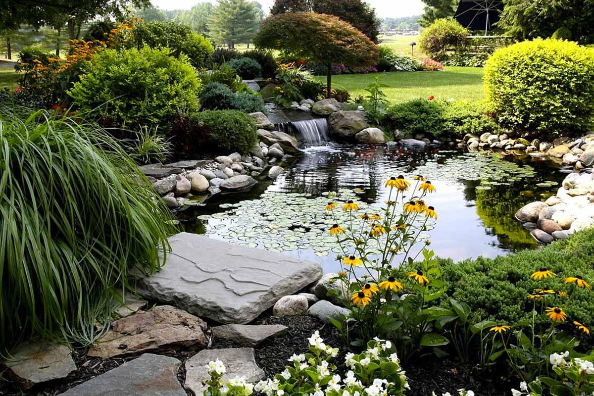 20 видов растений для сада в природном стиле